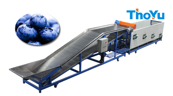 blueberry sorting machine