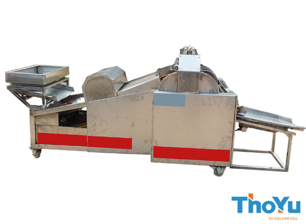 fruit slicing machine