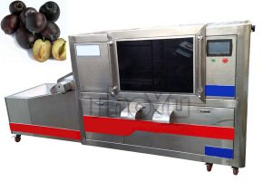 Plum Pitting Machine