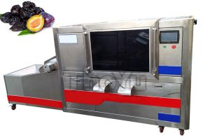 Prune Pitting Machine