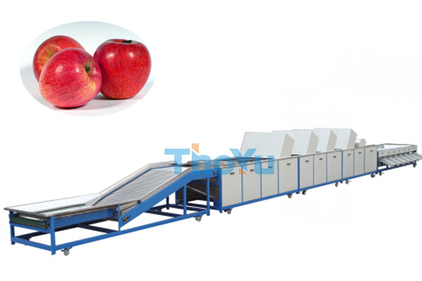 Apple Grading Machine