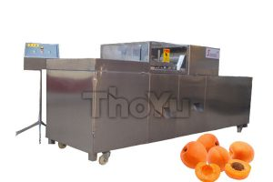Apricot Pitting Machine