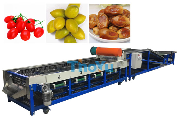 cherry tomatoes sorting machine