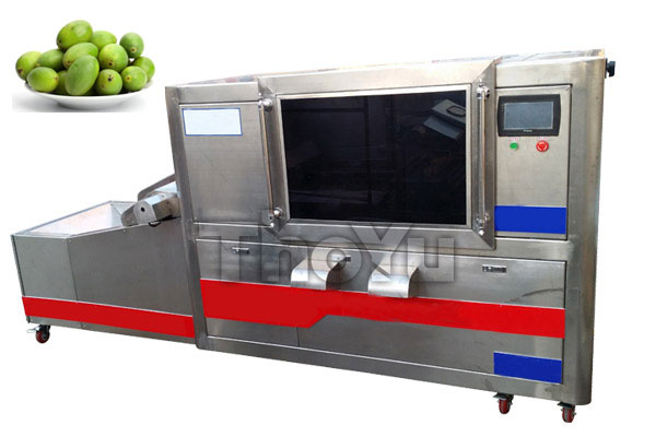 olive pitting machine